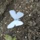 Metallfigur Schmetterling